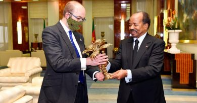 UK Minister for Africa with President Biya during audience at Unity Palace